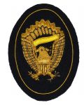 Infantry Officers Hardee Hat Insignia Badge